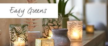 Easy-Greens1__97600